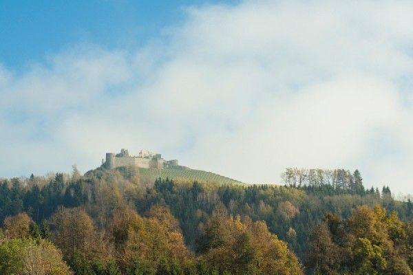 Biomasse erobert Burg